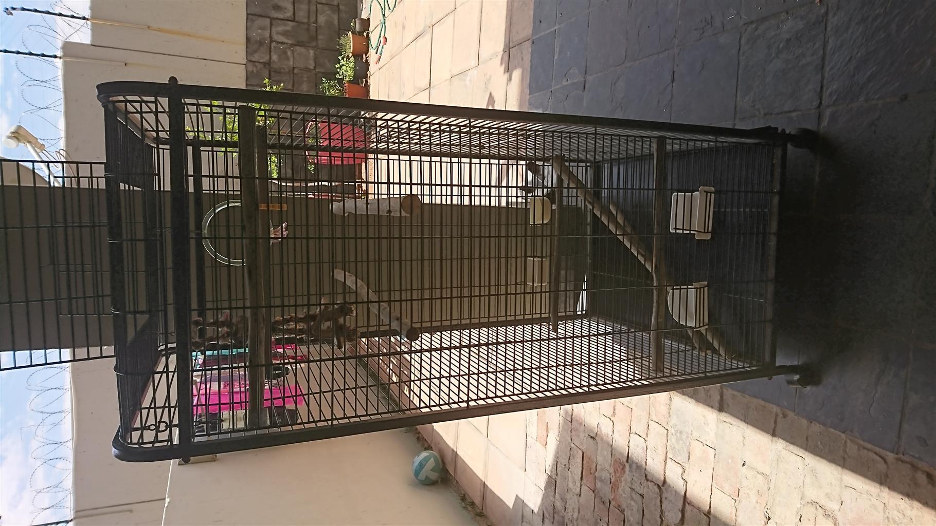 1 x large bird cage