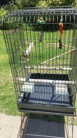 Bird cage with stand and bird tree