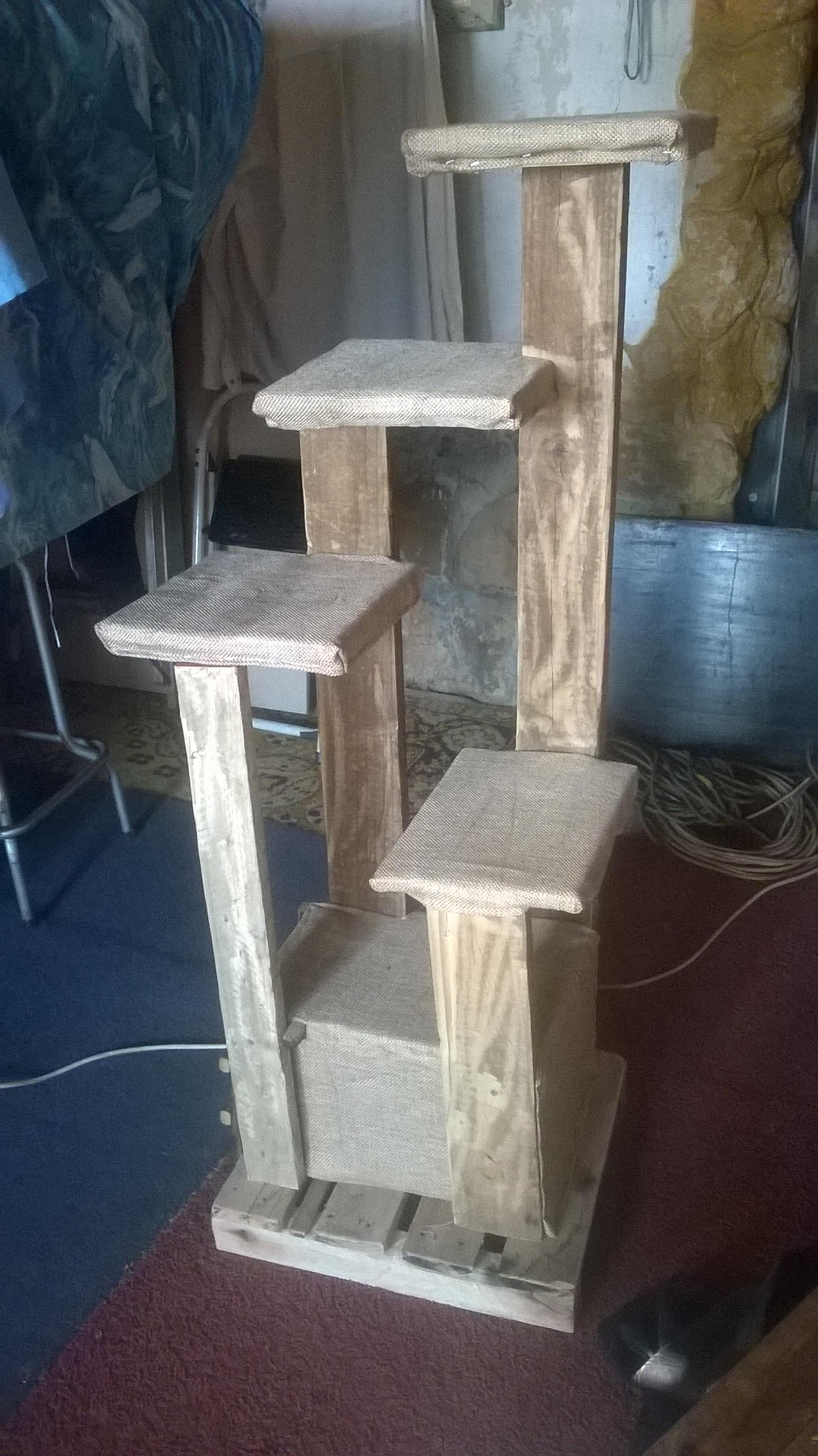 wooden cat climbing ladder