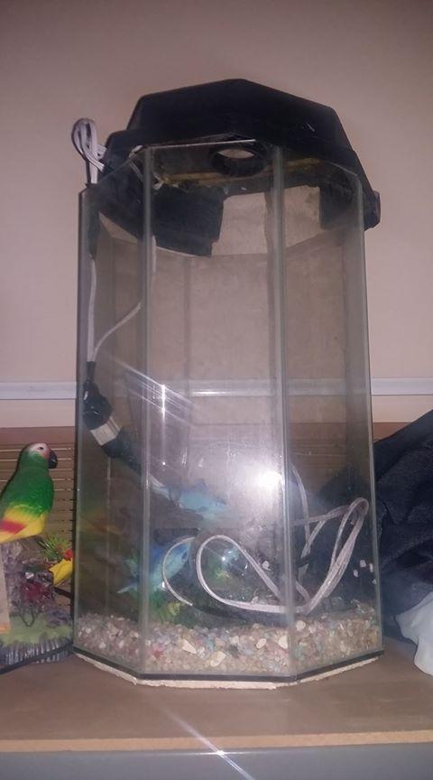 Fish tank Octagon 8 sides + canopy