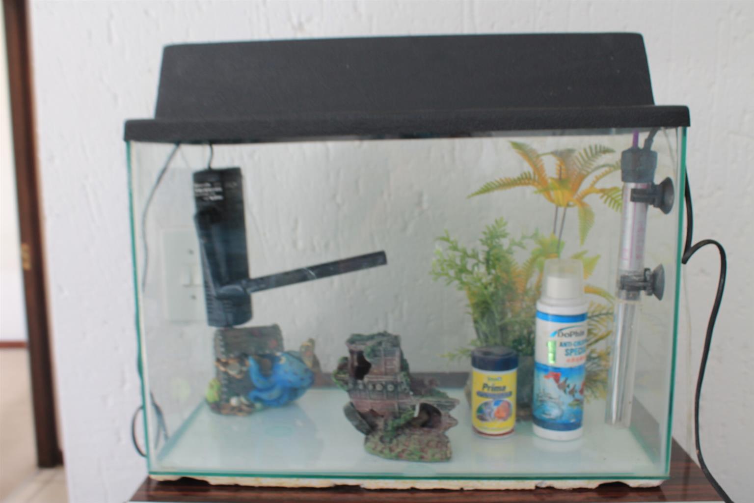 Fish Tank Plus Accessories For Sale