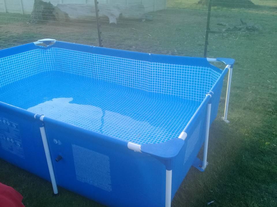 Blou swembad te koop