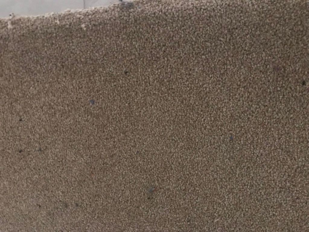 Carpet 5.5 m x 4.5 m with underfelt