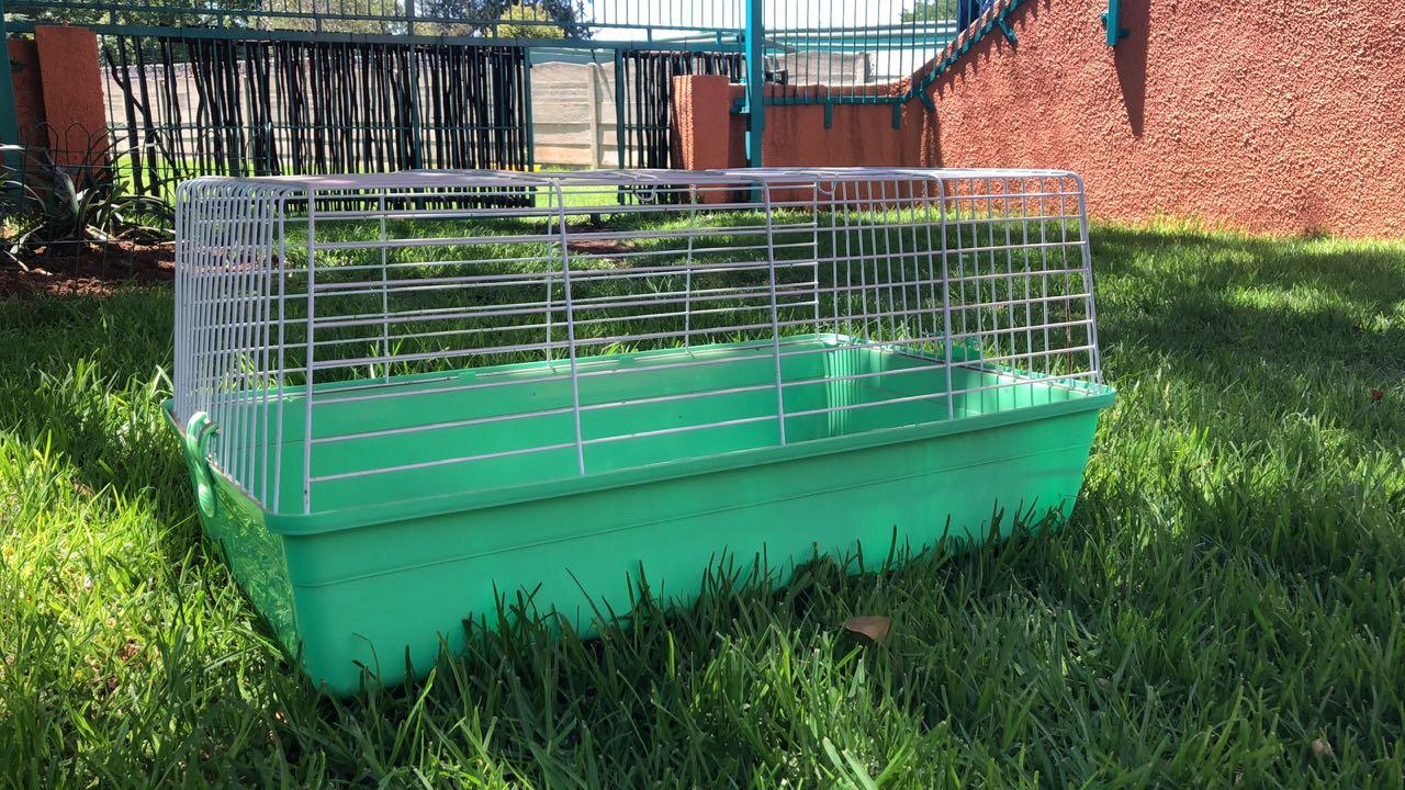 Guinea pig/Rabbit cage