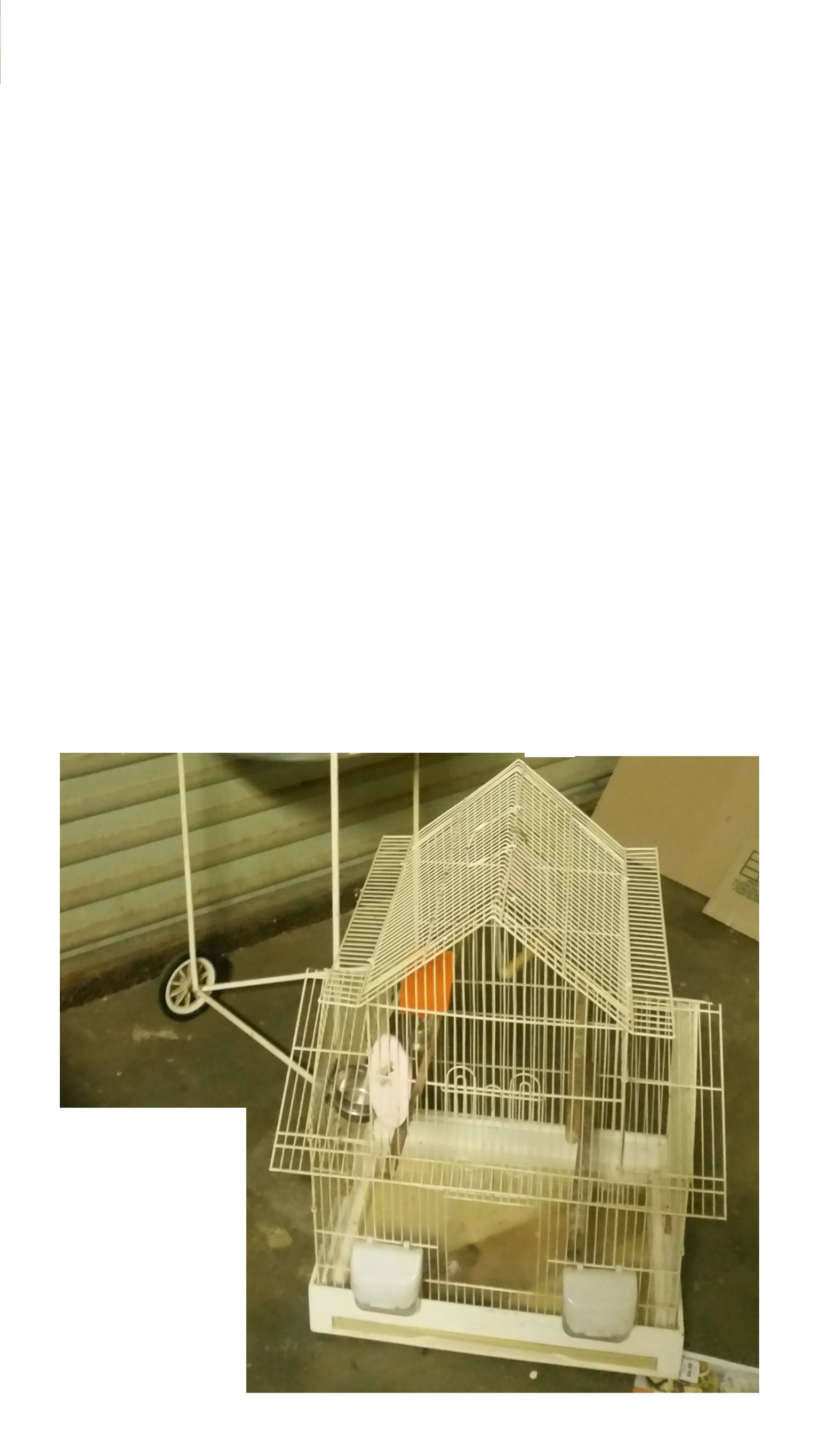 1 Lovely size bird cage