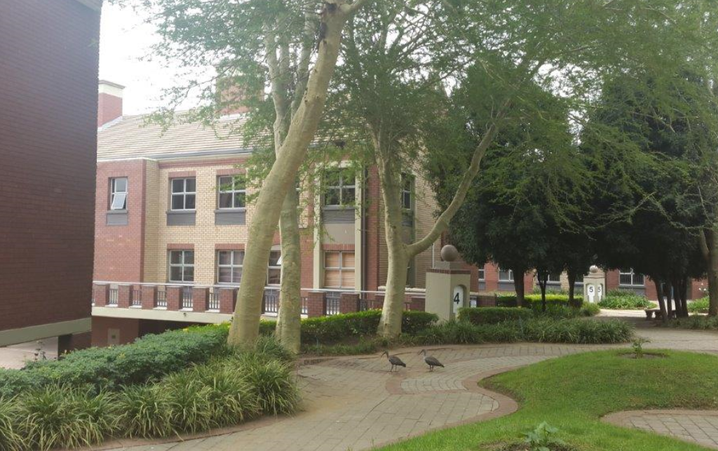Offices with shared boardroom, reception and kitchen Menlyn