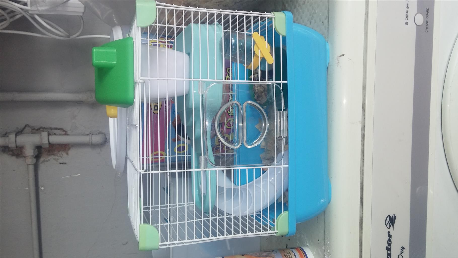 Hamster with cage for sale