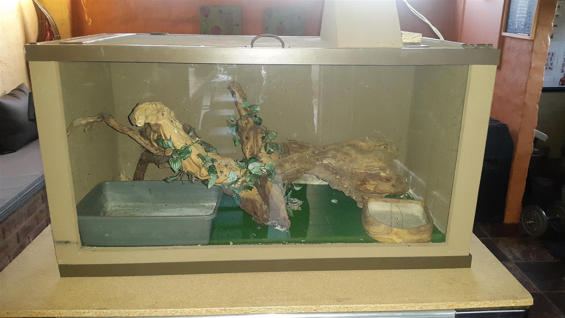 Reptile cage for sale + accessories