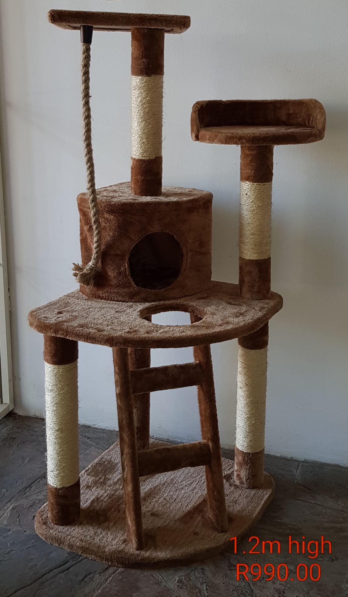 Cat Scratchers and beds