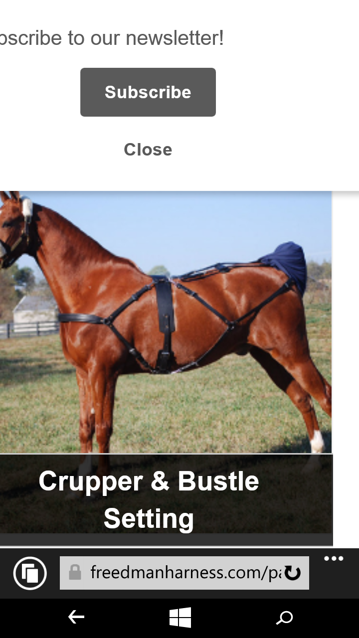 Cropper horse harness