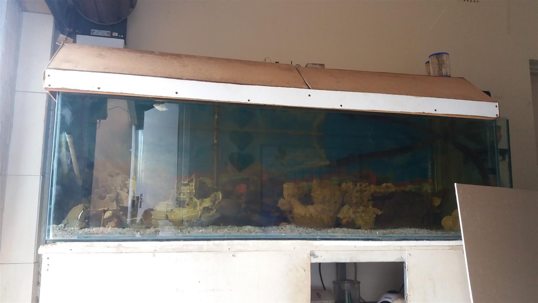 Marine Fishtank 1200 liter