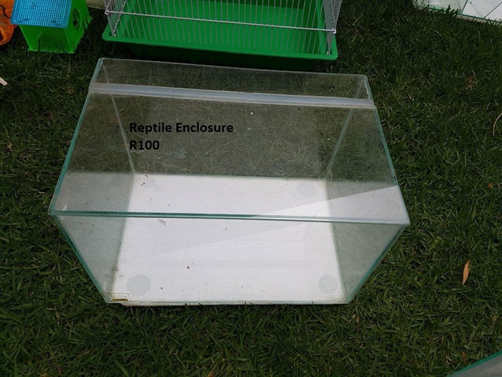 Reptile enclosure for sale
