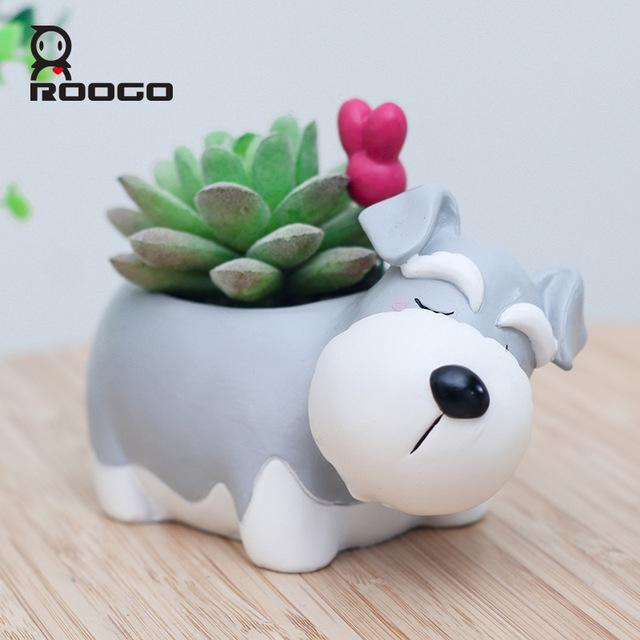Animal pot plants