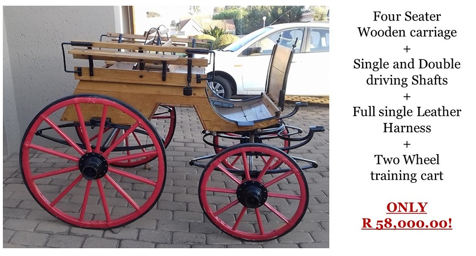 Wooden Horse Carriage for Sale