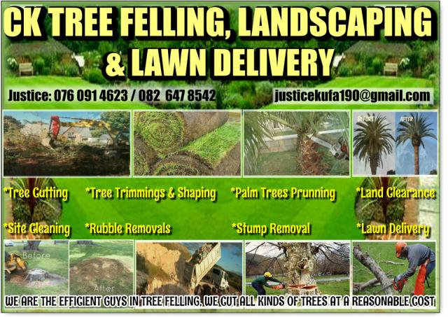 Tree Felling and Landscaping Services in Johannesburg