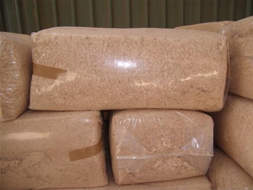Wood sawdust for sale