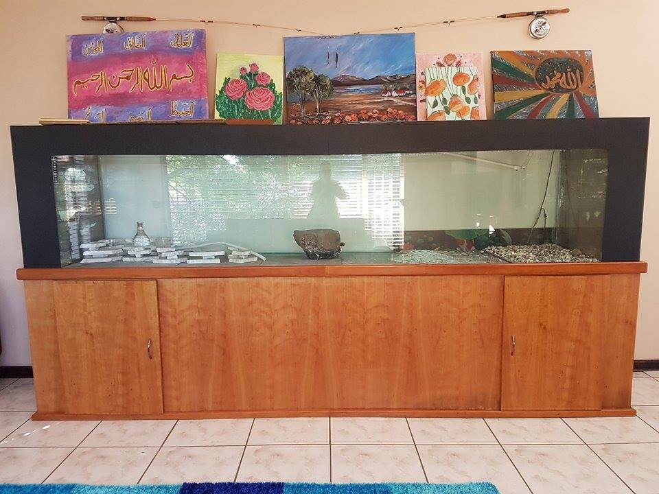 Large Display Fish Tank