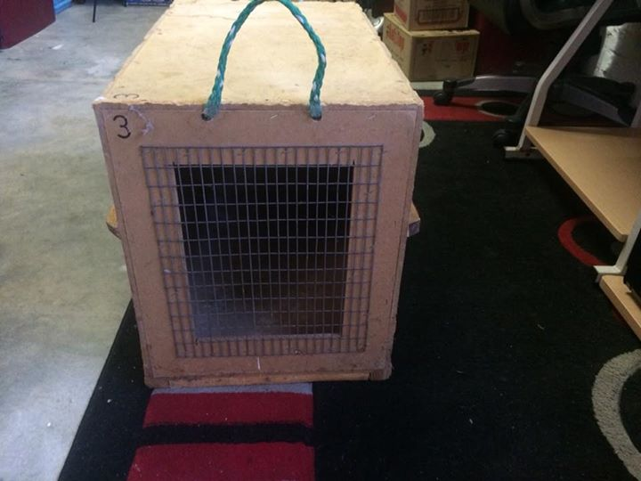 Dog travel crate to carry 2 medium dogs.