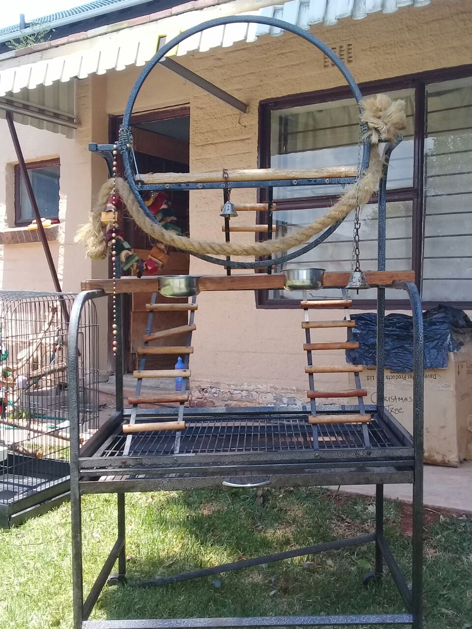 Parrot Feeding and Training Stand