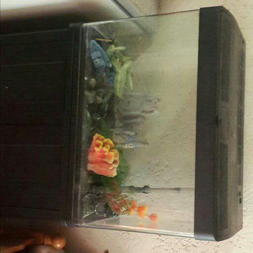 +-200lt fish tank