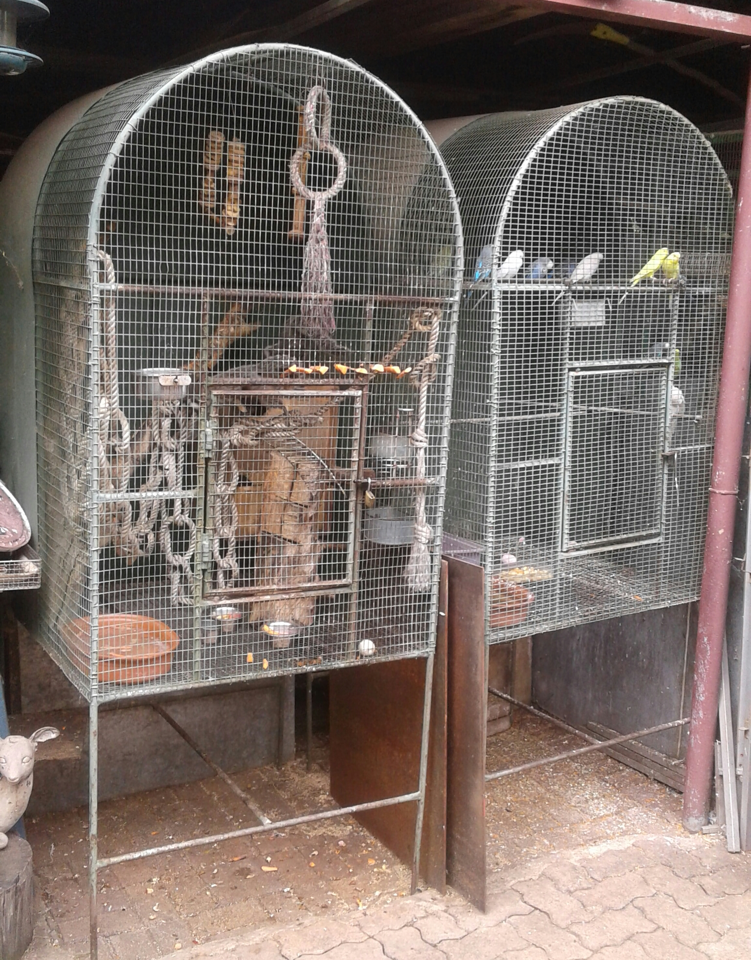 Animal Cages for sale
