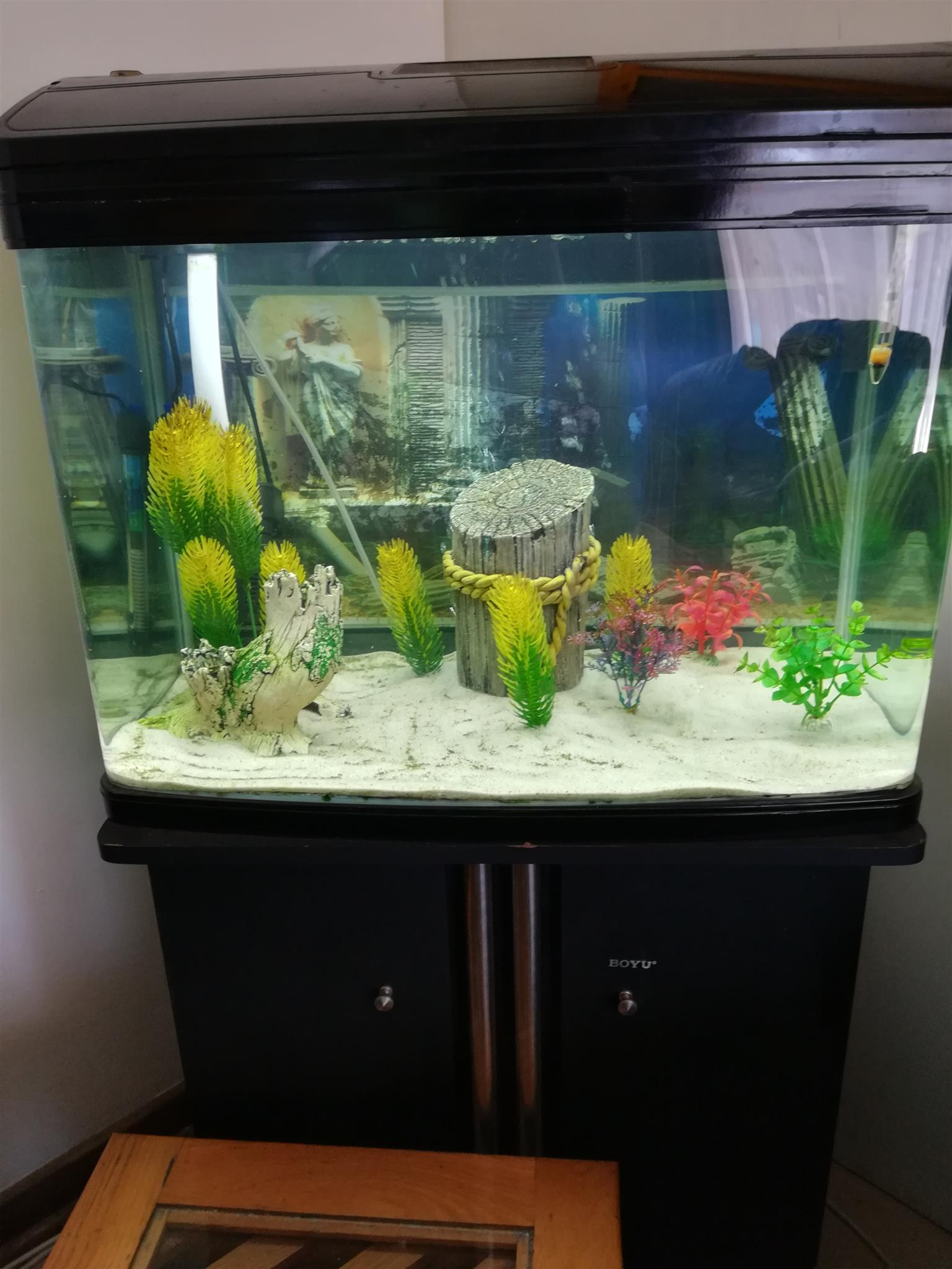 aquarium light lights passes threads physics energy water in air change forums as through