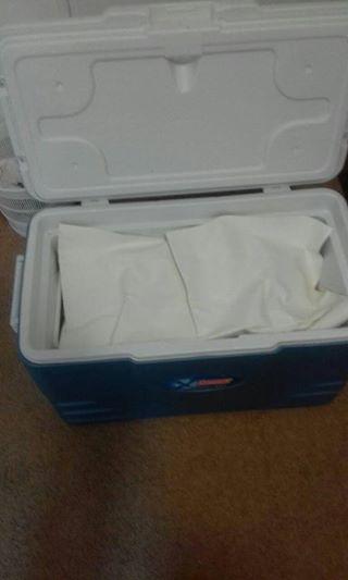 Big Coleman Cooler Box.