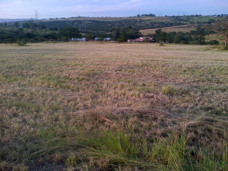 22 acre PMB Farm for sale.