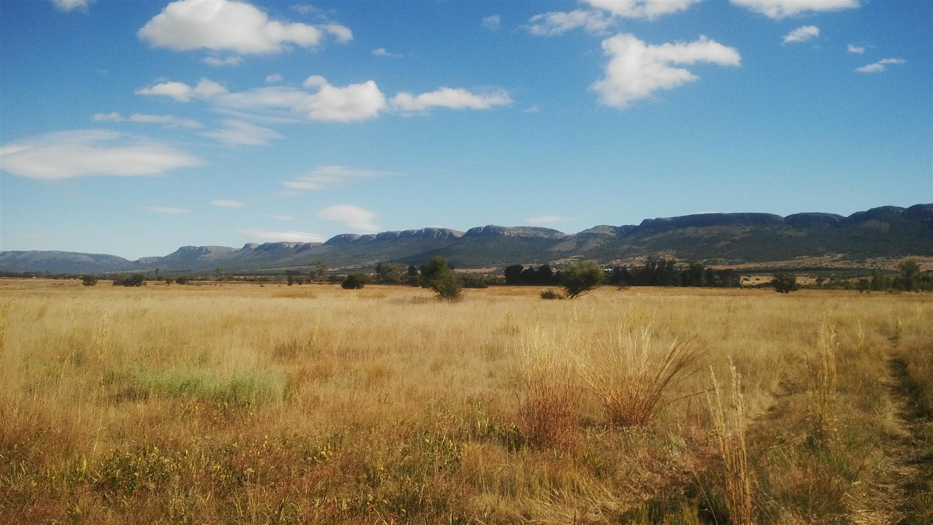 beautiful grazing land to rent skeerpoort