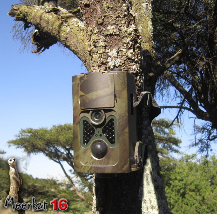 Camera trap - 16 megapixel trail camera