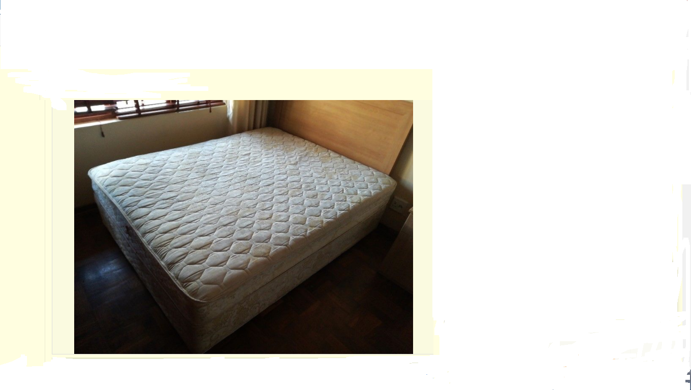 Sealy Queen Size Bed Base Mattress For Sale Junk Mail