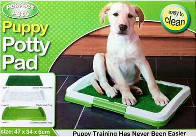 INDOOR DOG TOILET;YOUR DOG CAN GO WHEN HE NEEDS TO