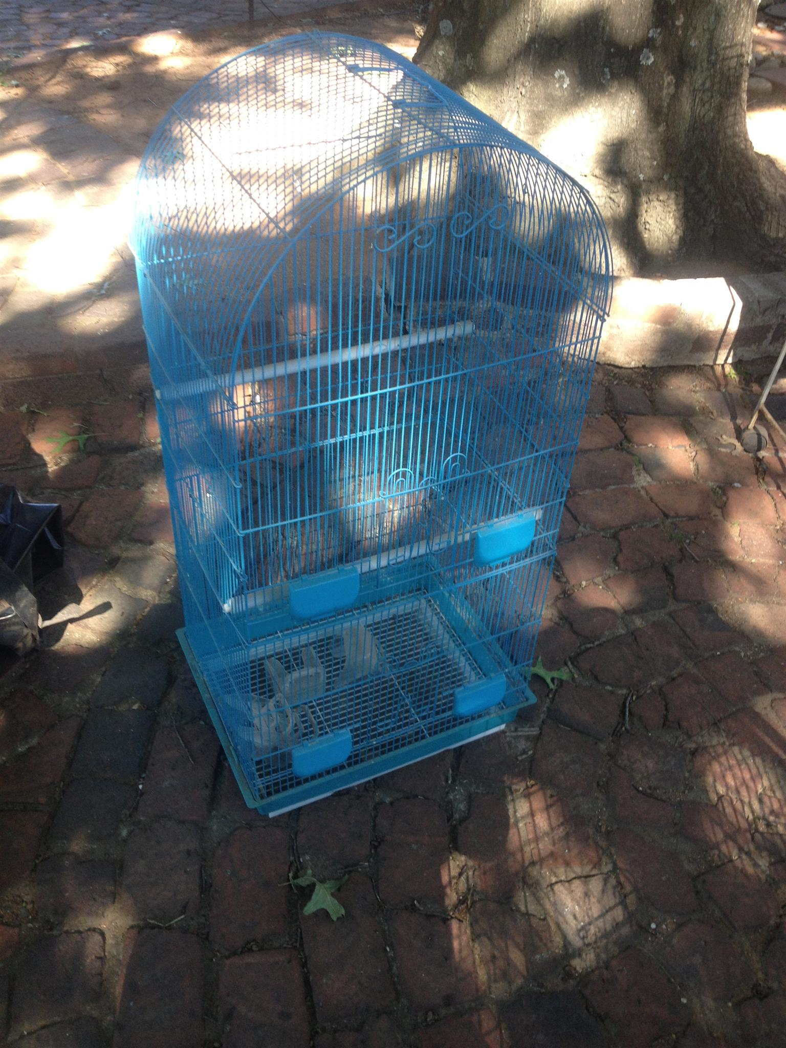 Budgie cage – bargain