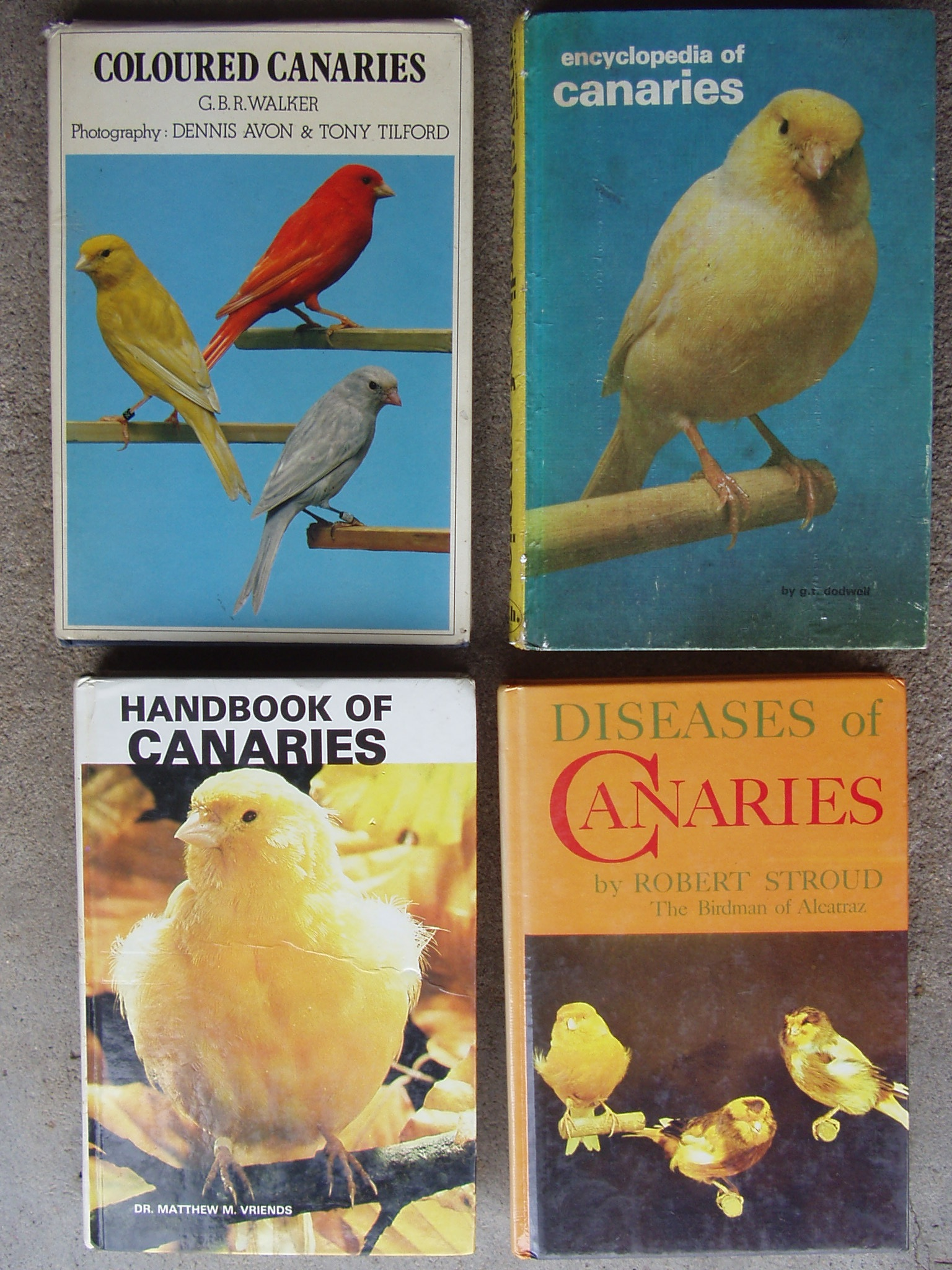 Books on Canaries - 4 books