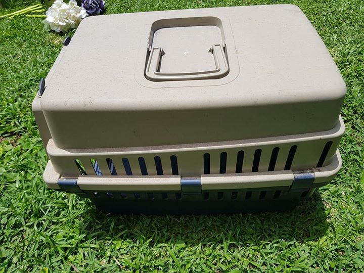 Cat travelling box new
