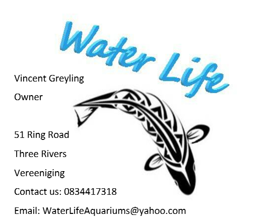Water life Aquariums