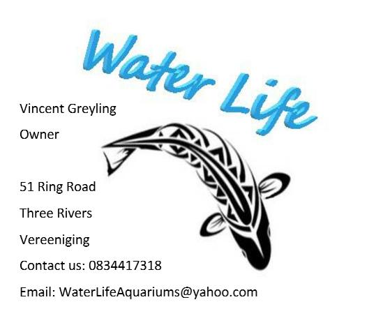 Water life Aquariums