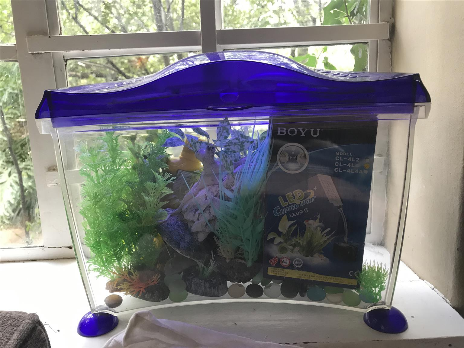 Marina fish tank including accessories