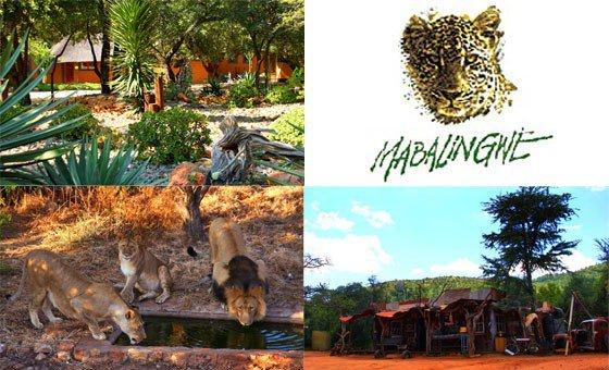 22 June to 29 June 2018  Mabalingwe Nature Reserve. Sleeps 4  R8 500
