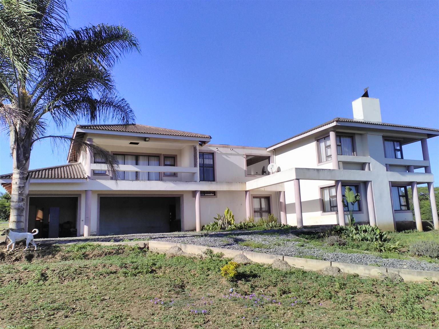 Double Storey and 3 hectares of land