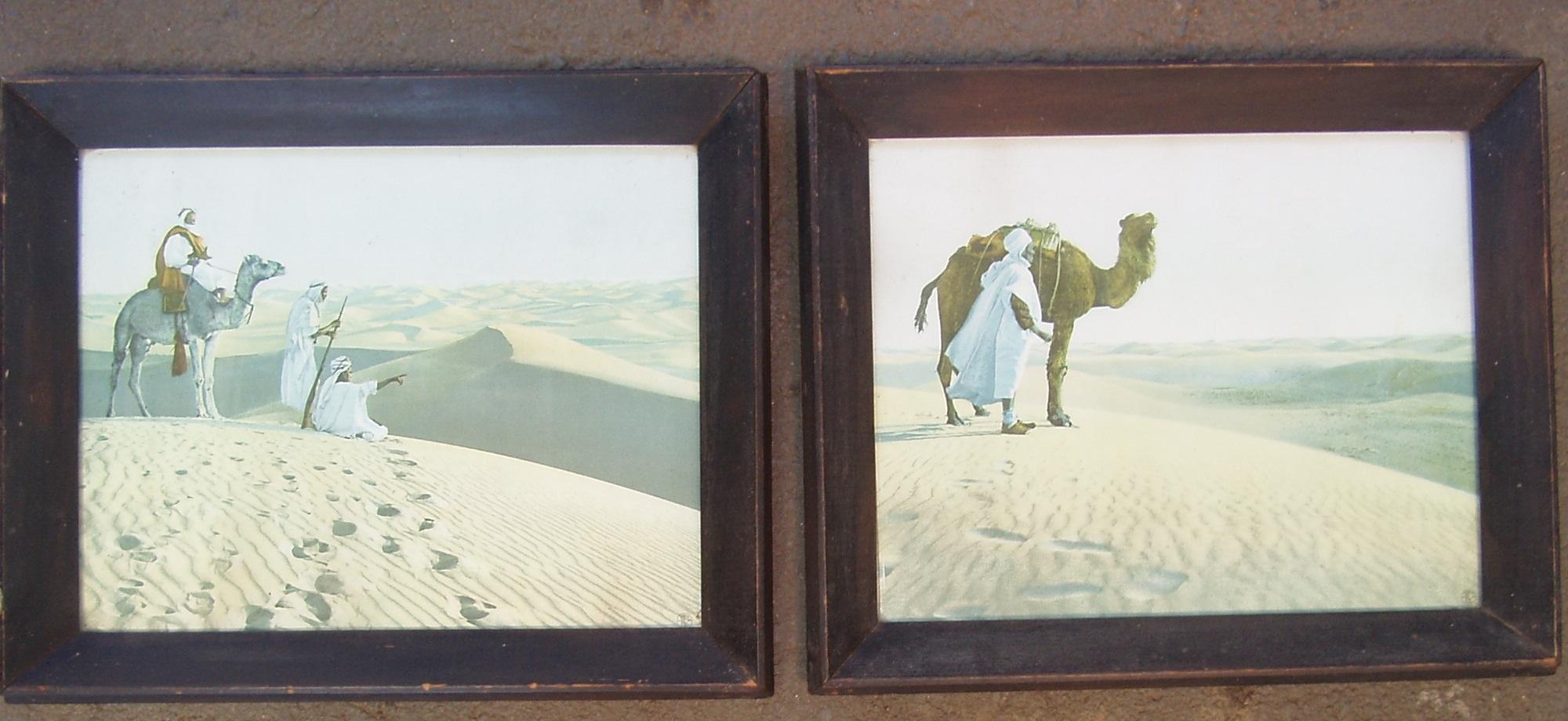 Vintage Framed Camel Prints - Very old frames and prints X 2