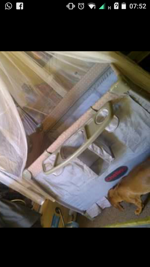 Camp cot for sale, includes mattress, mosquito net and bag. Nuk electric steriliser, jolly jumper.