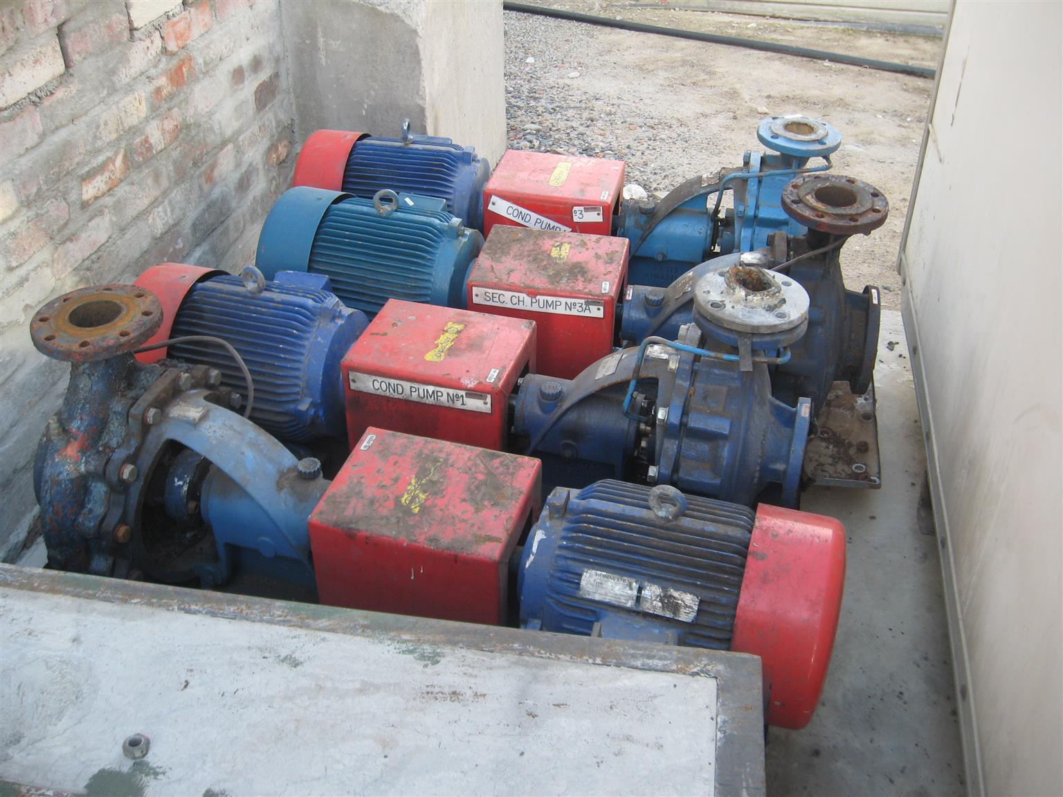 Water Pumps at Bargain Price