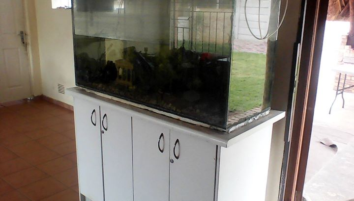 Fish tank with all accessories and cabinet R900 first come basis