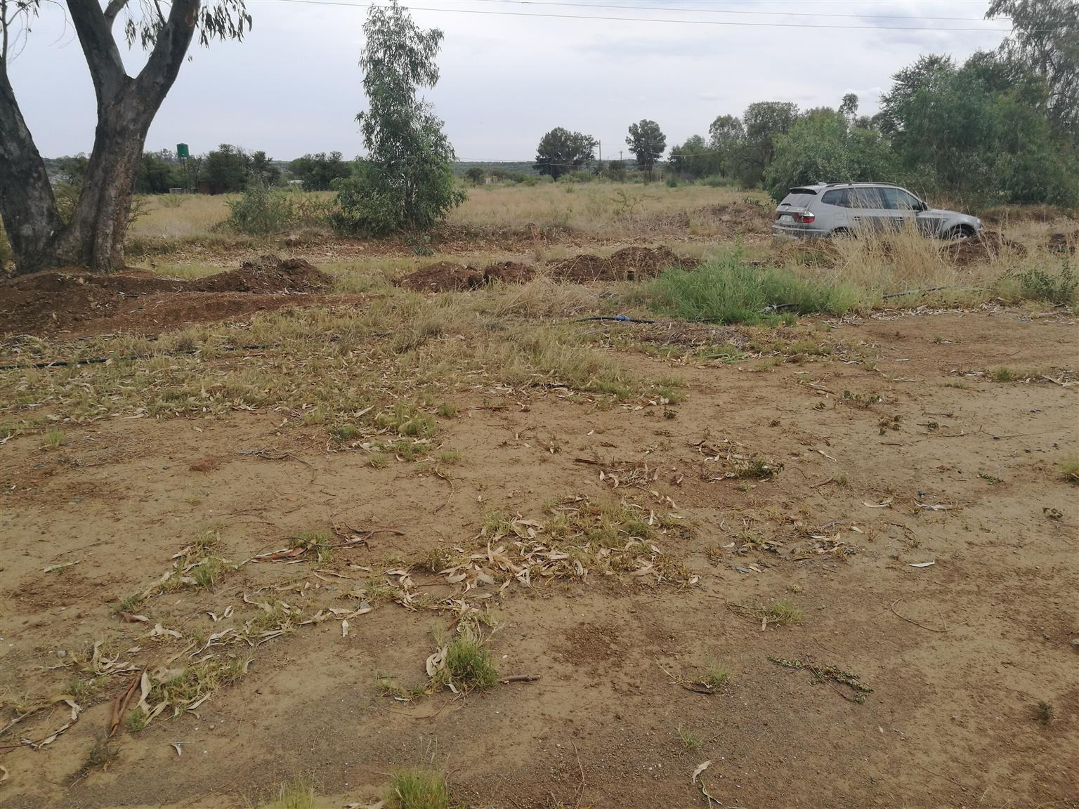 2200m2 Stand for sale in Swartruggens
