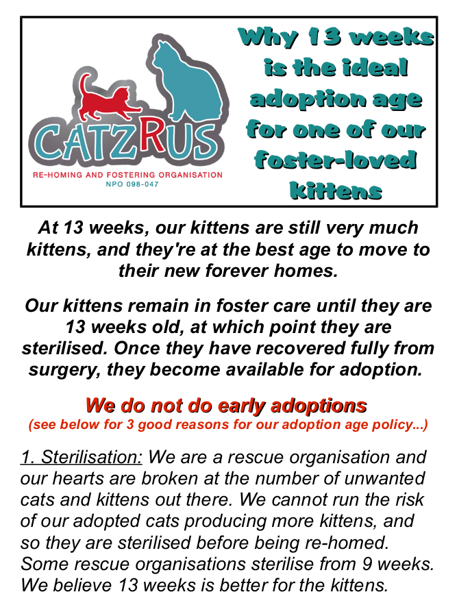 If your heart breaks at so many stray and homeless cats, then adopt responsibly from a registered Rescue Organisation.
