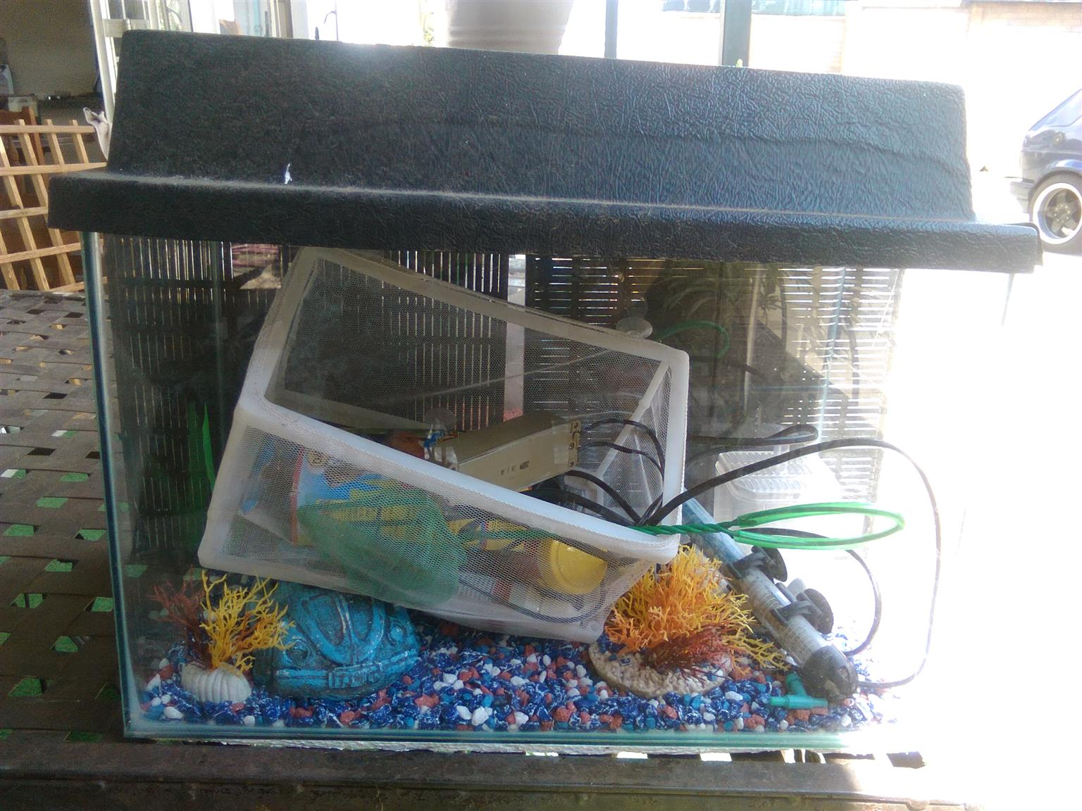 fish tanks x2 and accessories