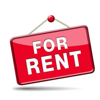 Bachelor to rent