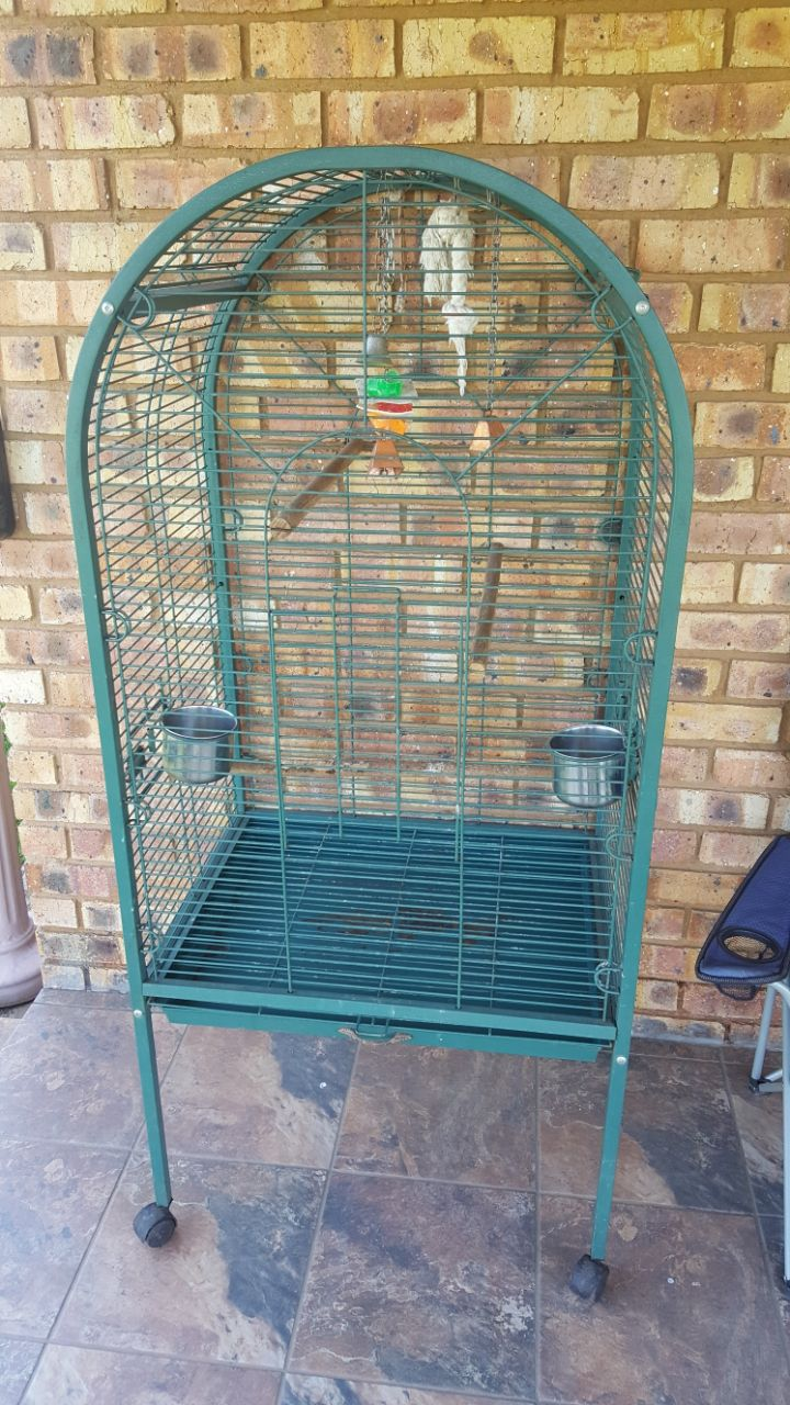 Big cage for birds