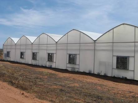 High-Quality Products and Excellent Services 0618238948 Greenhouses Western Cape